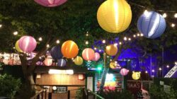Hiring Rentals for Your Outdoor Party – What You Need to Know