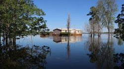 A guide on choosing the best flood restoration company
